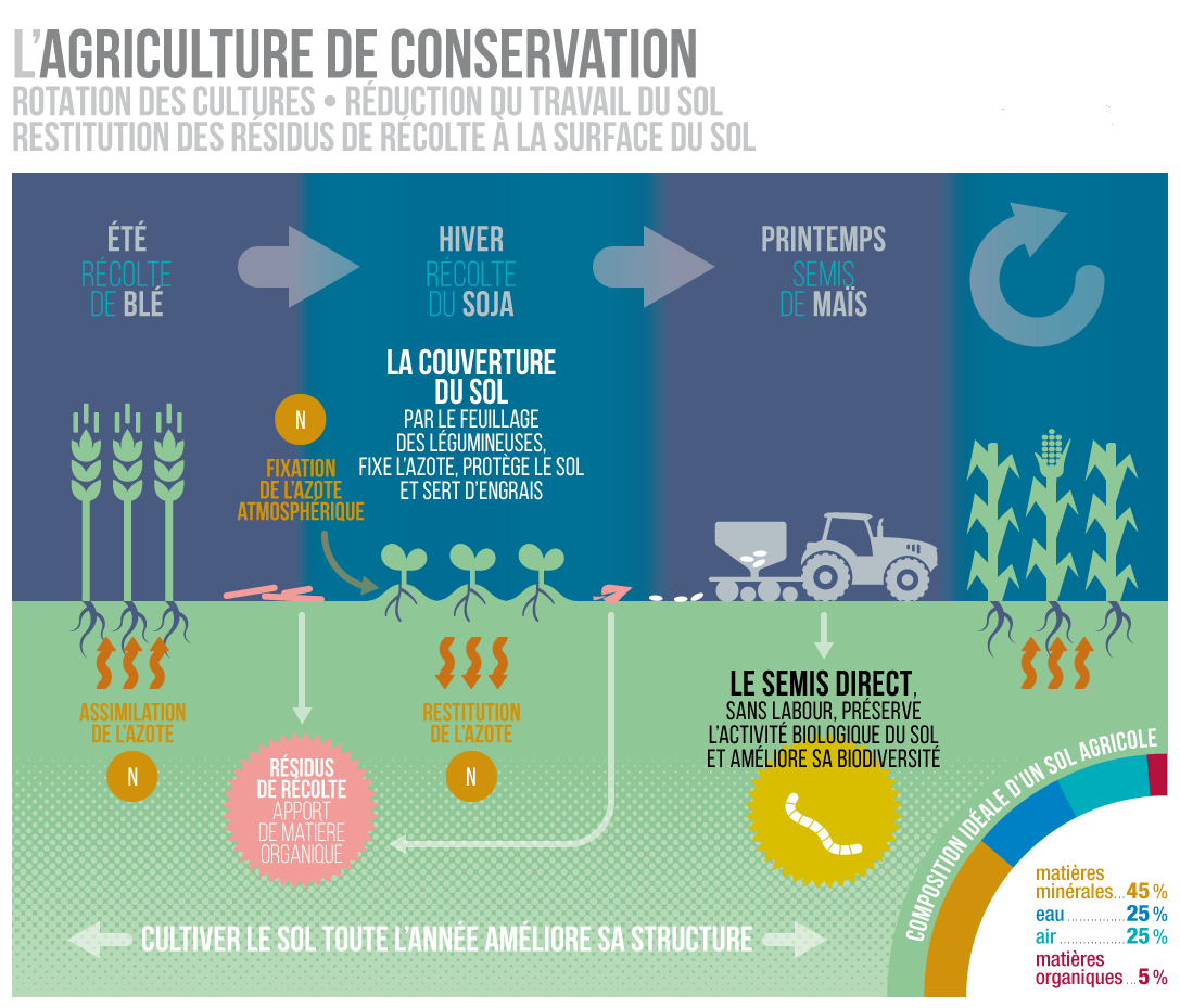 Introduction de l'Agriculture de Conservation en Zones d'épandage de Crues en Algérie