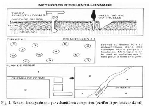 Fig. 1. Echantillonnage du soil par échantillons composites (vérifier la profondeur du sol)